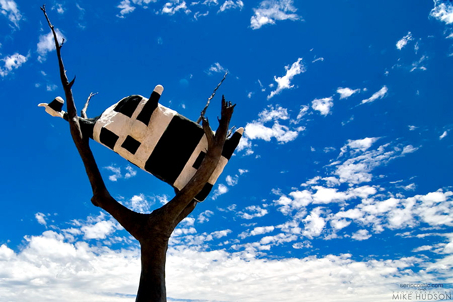 Cow in a Tree