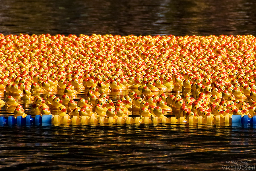 Ducky Rubber