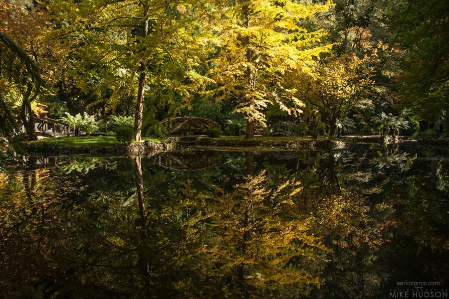 Autumn Bridges #3